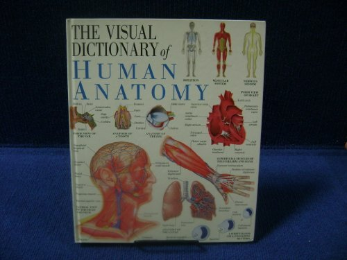 Human Anatomy, the ()