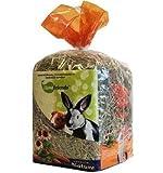 Cominter Heno Natural para roedores Home Friends con Manzana y llantén 500 gr