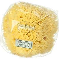 Esponja natural (marina) Honeycomb (12cm)