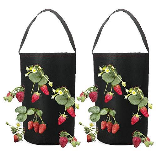 louisayork, confezione da 2 fioriere per fragole da appendere, con tasca, vaso per piante per fragole, vasi in tessuto per coltivare pomodori, erbe, fiori, fragole, feltro, nero, 38 * 22