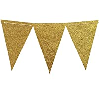 Hosaire Party Flag Multicolor Paper Bunting Banner Double Sided Indoor/ Outdoor Party Decoration Pack of 15