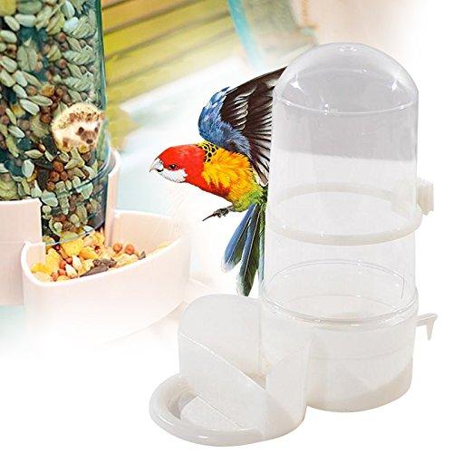Aprettysunny Pet Vogel Automatische Trinker Feeder Wasserspender Clip Große Papagei Igel