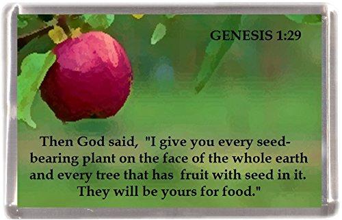 Kühlschrankmagnet Genesis 1:29 bibel Geschenk Souvenir Mit Englisch Wörter