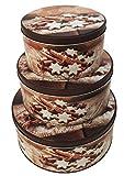 Plätzchendose Gebäckdose Vorratsdosen weihnachtliches Zimtstern-Motiv 3 Stück