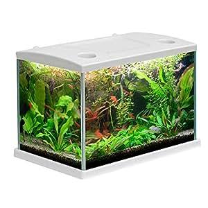 Acquario CLEO in vetro colore Bianco per pesci rossi completo 15 LT