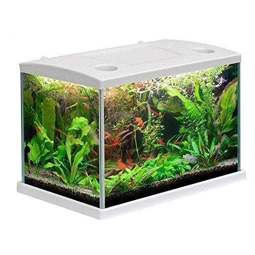 acquario-cleo-in-vetro-colore-bianco-per-pesci-rossi-completo-15-lt