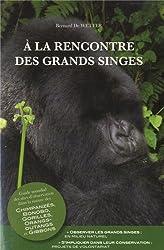 A la rencontre des grands singes