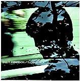 Songtexte von Brett Anderson - Slow Attack