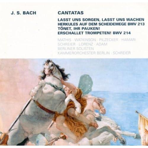 Lasst uns sorgen, lasst uns wachen, BWV 213: Recitative: Und wo? Wo ist die rechte Bahn (Alto)