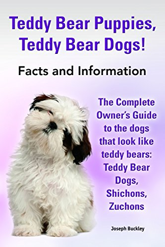 Teddy Bear Puppies, Teddy Bear Dogs!: The Complete Owner's Guide to the dogs that look like teddy bears: Teddy Bear Dogs, Shichons, (English Edition) -