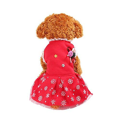 Balock Schuhe Haustier Kleid,Weihnachts Schneeflocke-Kleid Hundewelpen-Kostüme-Haustier-Kleidung,für Kleine Hunde,Welpen,Schnauzer, Teddy,Pudel,Chihuahua (Rot, L) (Shih Tzu Im Teddy Kostüm)