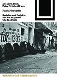 FavelaMetropolis: Berichte und Projekte aus Rio de Janeiro und São Paulo (Bauwelt Fundamente, Band 130)