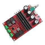 amazingdeal3652x 100W tpa3116d22-Kanal-Digital-Audio-Verstärker Board 12/24V für Arduino