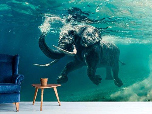 Papel Pintado para Pared Elefantes | Fotomural para Paredes | Mural |...