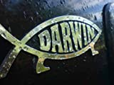 Darwin Fish Car Plaque.