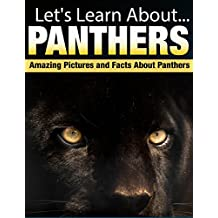 Panthers: Amazing Pictures and Facts About Panthers (Let's Learn About) (English Edition)