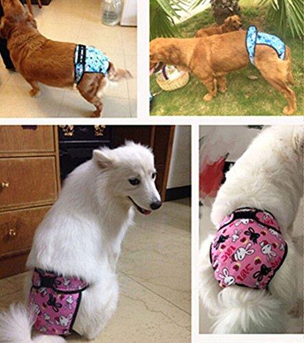 Zoom IMG-3 ylen lavabile femmina cane pantaloni