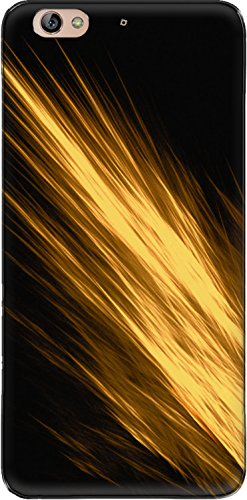 The Racoon Lean printed designer hard back mobile phone case cover for Gionee S6. (gold angle)