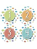 Monthly Baby Stickers by Months In Motion   Baby Boy or Baby Girl Milestone Onesie Sticker Fish (1144)