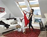 FAKRO Dachfenster Klapp-Schwingfenster Holz mit weißer Polyurethanschicht FPU-V U5 66 x 98
