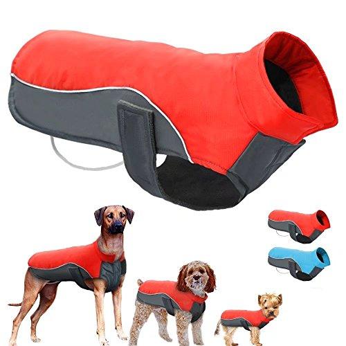 Berry - Chaleco reflectante para mascota, 8 tamaños disponibles para perros pequeños, medianos y grandes