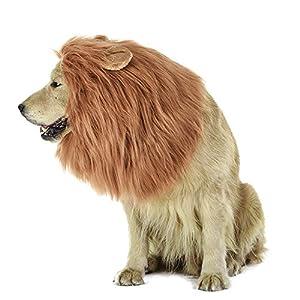 MiLuck Lion Mane Perruque pour chien et chat fantaisie avec oreilles pour animal domestique réglable confortable Fancy Lion Cheveux Chien Vêtements Robe pour Halloween Noël de Pâques Festival fête d'a
