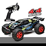 Demaxis Rc Camion Monster Truck Elettriche 4x4 Fuoristrada, 4wd off Road...