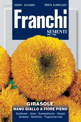 Seeds of Italy Franchi Semis de Tournesol Nain