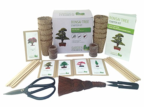 bonsai-tree-starter-kit-grow-your-own-bonsai-trees-gardening-gift-set-includes-3-bonsai-tools-10-gro