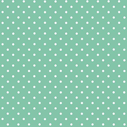 d-c-fix® 346-0648 - Pellicola adesiva in vinile a pois bianchi, colore del fondo: verde menta, dimensioni: 45 cm x 2 cm