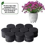 BELLE VOUS Unsichtbare Blumentopf Füße für Outdoor - Packung mit 40 Topf Füßen mit Selbstklebende Pads zum Pflanztöpfe und Blumen - Schützen Sie Ihre Töpfe vor Flecken