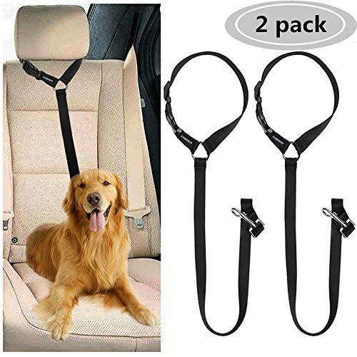 CGBOOM 2 Pack Hund Auto Sicherheitsgurt Pet Safety Leash Leash Leash Geschirr Auto Auto Auto Auto Welpe Sicherheitsgurt Verstellbarer Hund Sicherheitsgurt Reisezubehör (schwarz) -