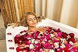 Ailiebhaus 50er herzförmige Kerzen, rauchfreie Teelichter, für Geburtstag, Vorschlag,Hochzeit,Party, Rot, Hochzeit Verlobung, Valentinstag (Rosa) - 4