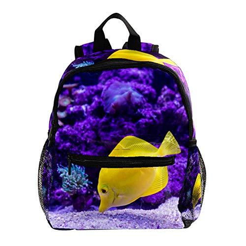 Tropischer Fisch Kinder Rucksack Leichte Schultasche Voller Druck Für Vorschulkind 3-8 Jahre Baby Tasche Windel Milchpulver Rucksack 25.4x10x30 cm (Tropische Fische Hat)
