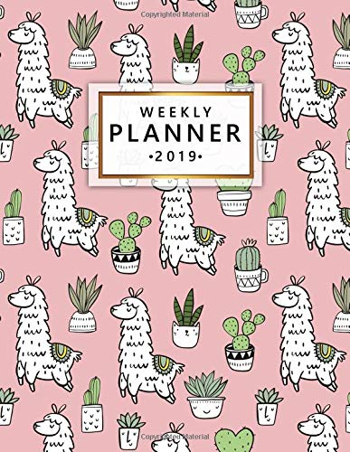 Weekly Planner 2019: Llama Cactus Weekly and Monthly 2019 Organizer. Nifty Yearly Calendar, Journal and Notebook (January 2019 - December 2019).