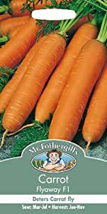 Mr. Fothergill's 14442 Sachet de 500 graines de carottes Flyaway F1