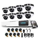 1080P Überwachungskamera System H.View 8CH AHD DVR und 8 Außen 1080P Dome Überwachungskamera Set für Innen und Außen 1TB Festplatte Bewegungsmelder IR Nachtsicht
