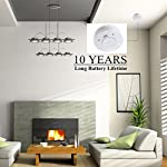 Smoke Alarm, 10-Year Extended Battery Life Operated Fire Alarm Fire Smoke Detector with Photoelectric Sensor and Smart Hush Function by Ningbo Kingdun Electronic Industry CO. Ltd