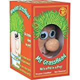 A large fist-sized head stuffed with sawdust.Grass seed is mixed into the top so that when watered, grass sprouts like green hair.Mr Grasshead measures 13cm