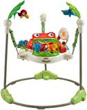 Fisher - K6070 -Price Jumperoo Jungle