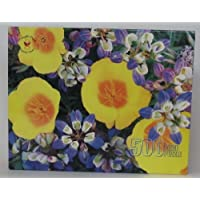 Comparador de precios Merrigold Press Poppies & Lupine 500 Piece Jigsaw Puzzle by Golden Books Publishing Company, Inc - precios baratos