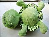 philna1225cm ojos grandes tortuga tortuga bebé de peluche de juguete Animal de peluche (verde)