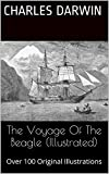 Image de The Voyage Of The Beagle (Illustrated) (English Edition)