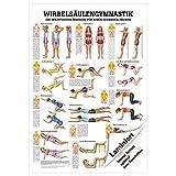 Wirbelsäulengymnastik Lehrtafel Anatomie 100x70 cm medizinische Lehrmittel