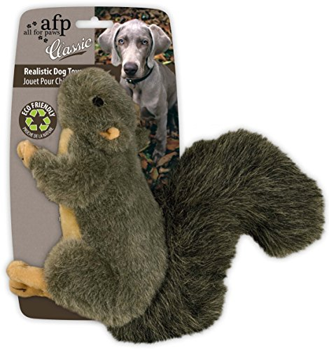All For Paws Squirrel Dog Toy with Squeaker, 7-inch/ 18cm