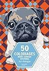 50 coloriages Bébés Animaux Mystères