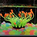 POPETPOP Fish Tank Decor Glowing Effect Artificial Coral Plant,Silicone Coral Ornament for Fish Tank Aquarium Decor-Yellow by POPETPOP