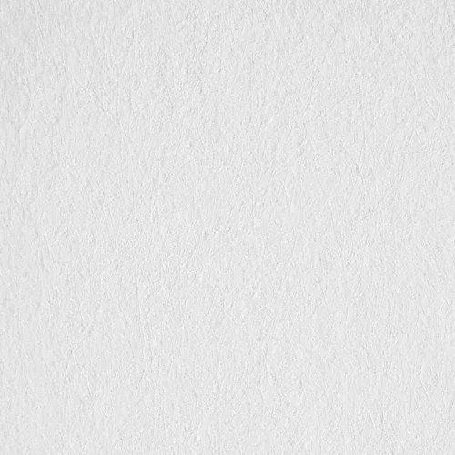 Maler - Glasvlies 50 x 1 Meter (1,06EUR/m)