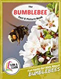 The Bumblebee Fact and Picture Book: Fun Facts for Kids About Bumblebees (Turn and Learn)