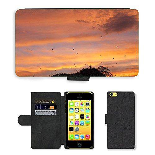 Just Mobile pour Hot Style Téléphone portable étui portefeuille en cuir PU avec fente pour carte//m00138148Oiseaux Paysage Coucher de soleil nuages ciel//Apple iPhone 5C